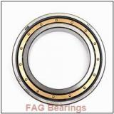 FAG RSL 183005 USABearing 45*66.85*23